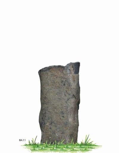 BA.f.1.W.80x36