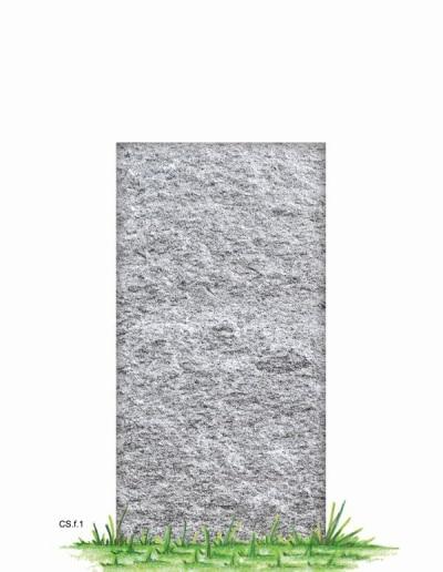 CS.f.1.W.100x50