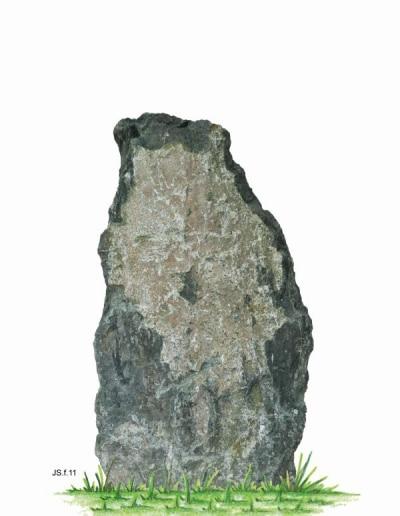 JS.f.11.W.107x58