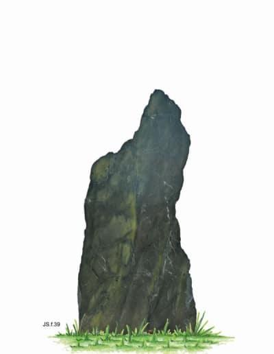 JS.f.39.W.100x47