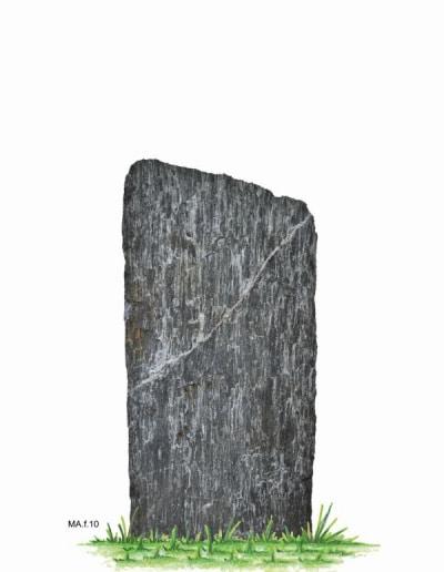 MA.f.10.W.99x46