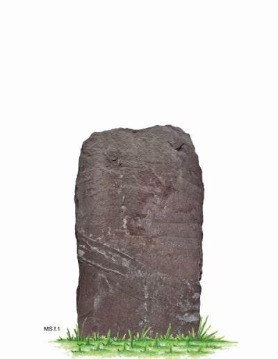 MS.f.1.W.87x49
