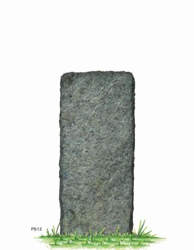 PS.f.2.W.95x40
